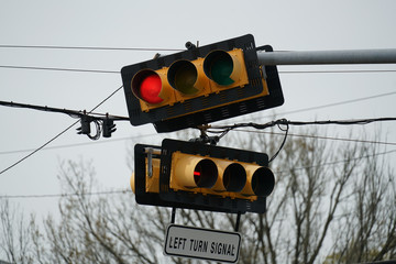 Traffic Signals in the City