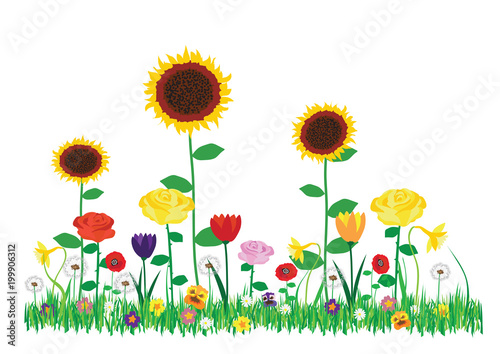 Color Vector Spring And Summer Flowers Collection Cartoon