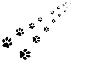 Black paw prints walking the animal. Traces isolated on background.