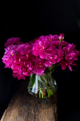 burgundy, red, bright red peonies - bouquet on a black background