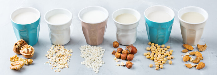 Assortment of organic vegan non diary milk