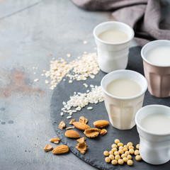 Assortment of organic vegan non diary milk