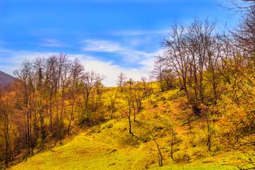 Kavak'ta mavi gökyüzü ve doğa - Kavak - Samsun