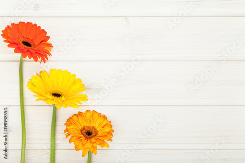 Border Made Of Garden Colorful Flowers Gerbera On White Wooden Rustic Table Background With Copy Space