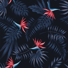 strelitzia red dark pattern