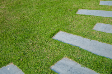 Cements pathway on grass field