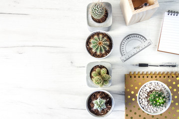 Top view on a white desk with cactuses arranged in rows, a notebook and a pen