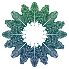 frame with set tree palm leafts vector illustration design