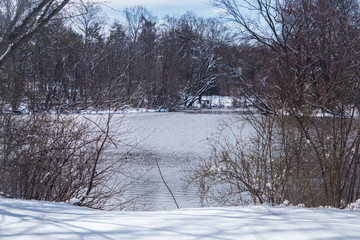 Winter scene with snow and lake
