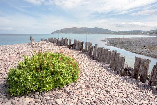 Beach at Porlock weir in summer exmoor somerset uk