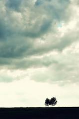 Minimalist single tree silhouette. Concept of loneliness, depression, escape, friendship, support,...