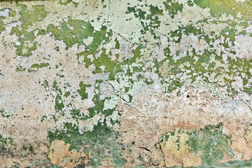 Green plaster wall. Stucco surface background. Grunge scratched concrete panel