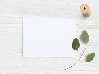 Feminine wedding desktop mock-up with blank paper card, wooden spool and Eucalyptus populus branch on white shabby table background. Empty space. Styled stock photo, web banner. Flat lay, top view.