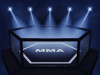 MMA cage lit by spotlights, Mixed martial arts fight night event