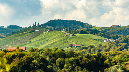 Austria Vineyards Leibnitz area south Styria travel spot