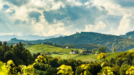 Austria Vineyards Leibnitz area south Styria travel spot