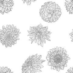 Beautiful monochrome sketch, black and white dahlia flower seamless wallpaper