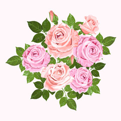 Pink and beige vector roses  wreath isolated on white