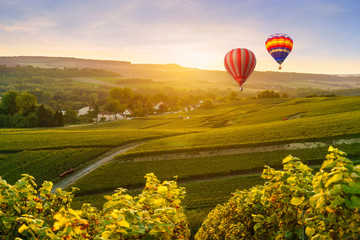 Poster Ballon Colorful hot air balloons flying over champagne Vineyards at montagne de Reims, France