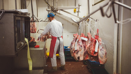 Butcher working in meat storage room