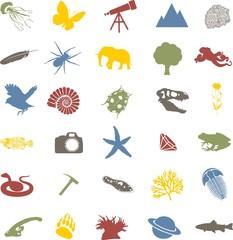 Icone relative al mondo della natura