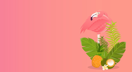 Flamingo bird illustration design on white background