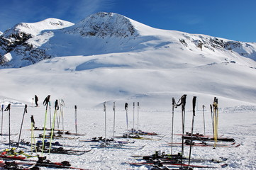 Italy. Alps. While skiers are resting their skis are waiting