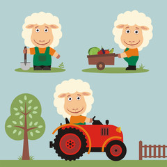 Set of funny sheep farmer with shovel, with wheelbarrow with vegetables, in farm tractor. Collection of sheep is working on the farm.