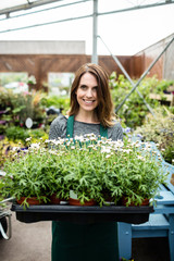 Female florist holding a tray of potted plant