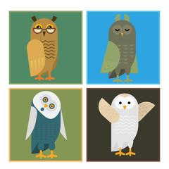Cartoon owl bird cute character sleep sweet owlet cards vector illustration.