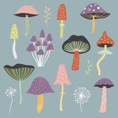 Mushrooms illustrations