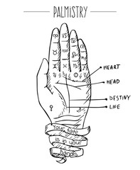 Hand drawn vector illustration of hand and palmistry scheme. Black drawing isolated on white background.