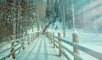 Russian Traditional wooden gangway