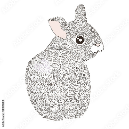 Happy Easter Greeting Card Poster With Cute Hand Drawn Rabbit Bunny Illustration