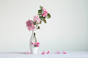 pink apple spring flowers in vase on white background