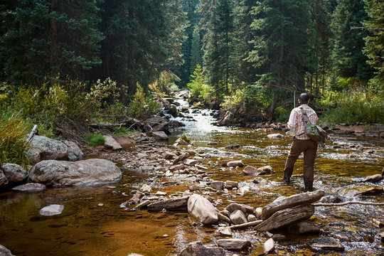 Fisherman fishing in mountain stream in wilderness