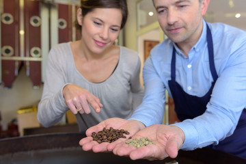 workers choosing beans of the best quality at coffee factory