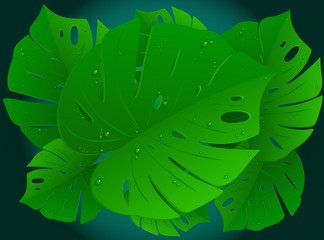 Tropical leaves. Vector Illustration 3D