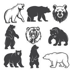 Monochrome illustrations of stylized bears. Pictures set for logos or badges design