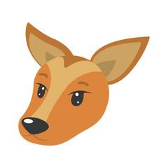 cute female deer head wild animal