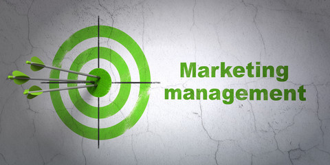 Success advertising concept: arrows hitting the center of target, Green Marketing Management on wall background, 3D rendering