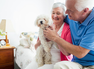 Senior couple holding a dog