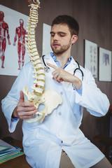 Physiotherapist explaining spine model