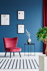 Elegant blue living room interior
