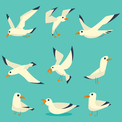 Flying, on the water and standing seagulls cartoon set. Vector flat birds icons isolated on blue background.