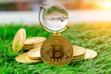Gold crytocurrency bitcoin rests on the grass in a concept that represents the financial economy that affects the business of the virtual world through the Internet through the blockchain technology.