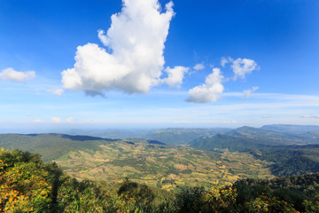 Landscape nature on top of a mountain at Phu Rua , Loei , Thailand