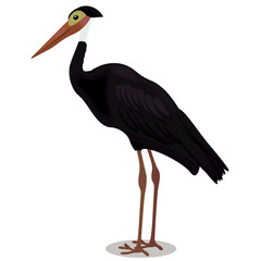 Storm s stork cartoon bird