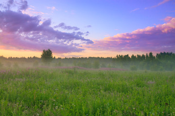rural landscape with sunrise  and meadow