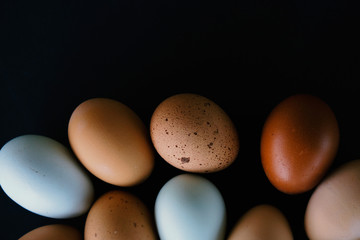 Farm fresh brown and blue eggs for healthy breakfast food.  Egg from chicken isolated in shell on black background.